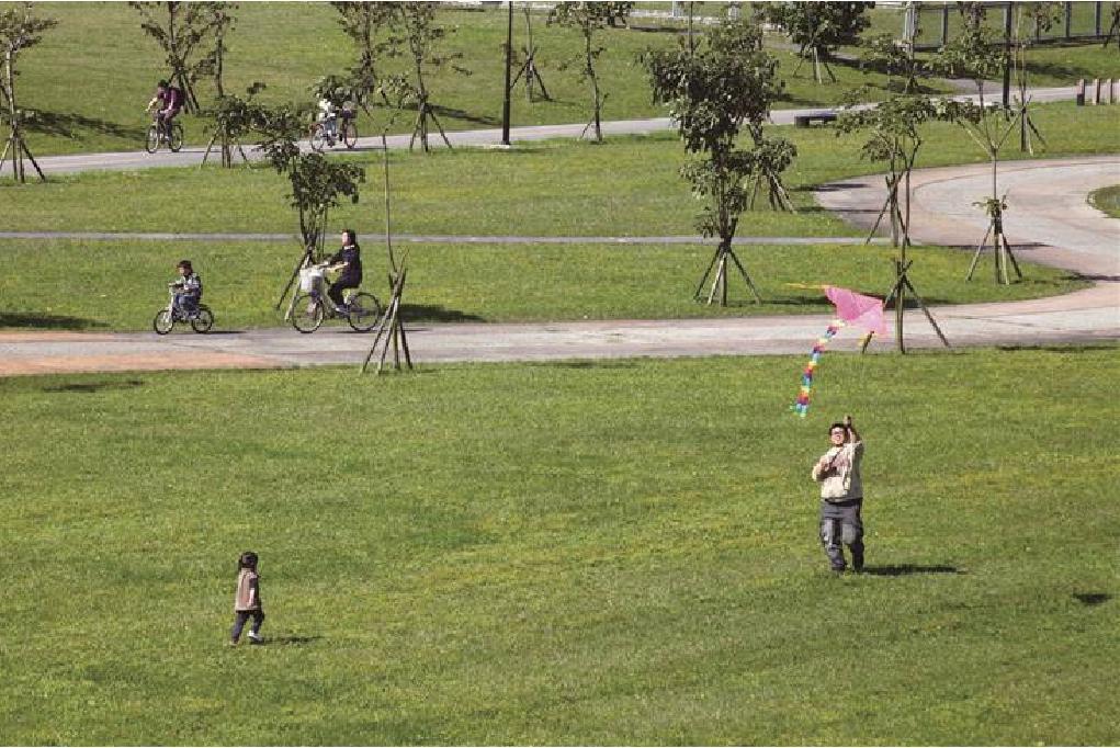 浮洲藝術河濱公園 (羊咩咩的家)